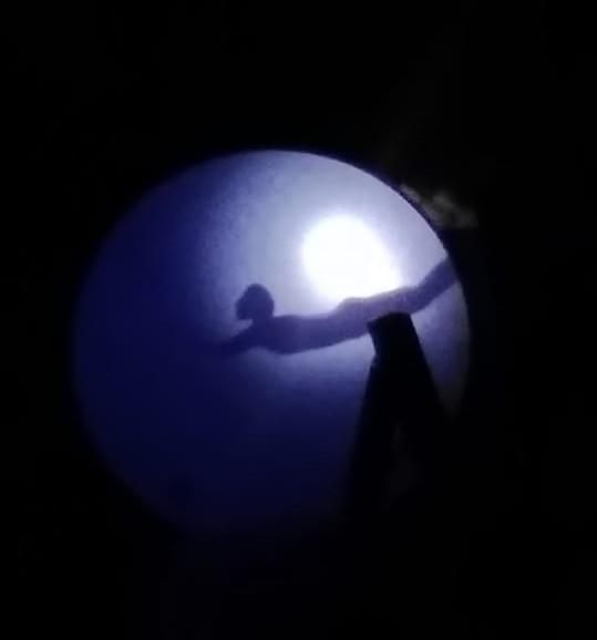 principe granchio ombre